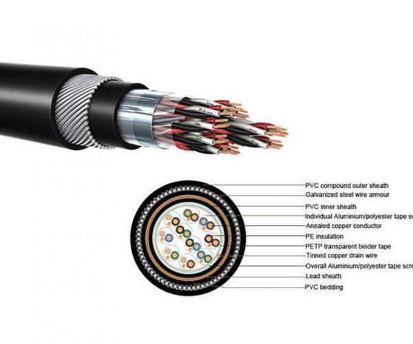 کابل های ابزاردقیق جهت کاربرد در سیستم پردازش داده ها و کنترل فرایند ها بکار می روند و قابل نصب در فضای باز و یا بصورت دفن در زمین می باشند.